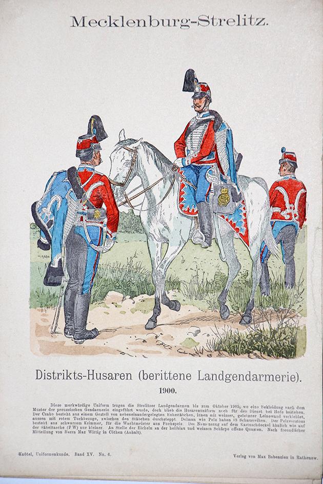 Mecklenburg-Strelitz 1900 - Uniformenkunde - Richard Knötel - XV - Planche 6