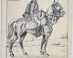 Carte Bucquoy - Les Uniformes du 1er Empire - Série 111 - N°1/2/3