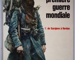 La première guerre mondiale - Tome 1 - Larousse - De Sarajevo à Verdun.