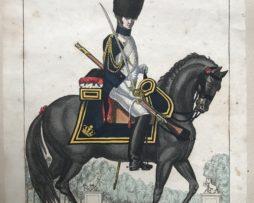 Planche Martinet XIX Grenadier à Cheval de la Garde Impériale