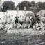 Grande Photo Soldat Allemand Infanterie - Service en campagne - Campement - Boulangerie - XX siècle
