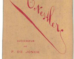 CDV albumen carte de visite - Guillaume III, né Willem Alexander Paul Frederik Lodewijk van Oranje-Nassau