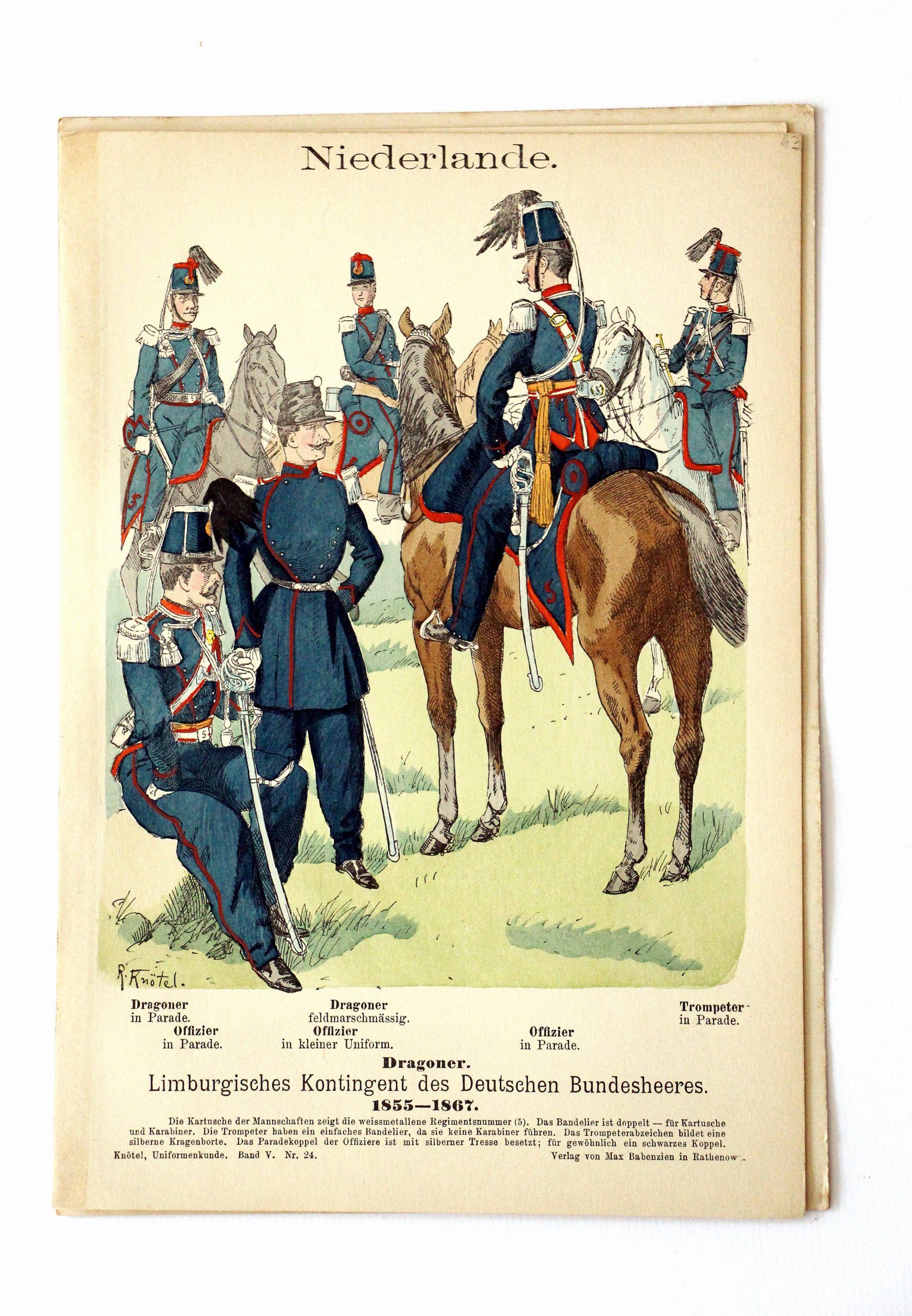 Niederlande- Uniformenkunde - Richard Knoetel - V - Planche 24