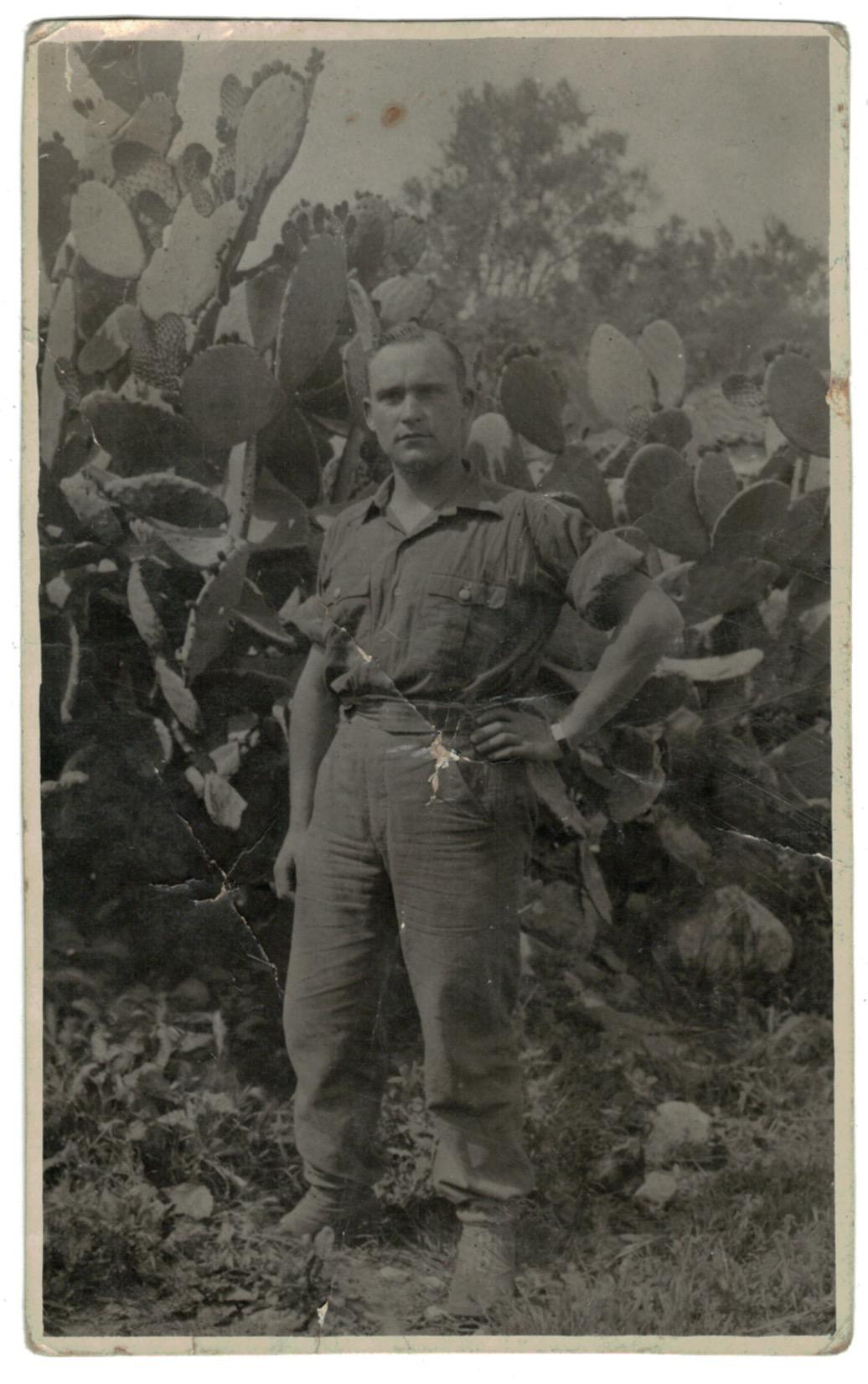 3 Cartes photo Soldat Allemand - Front Afrique 1943 - Deutsches Afrikakorps - Uniforme - Afrique - Werhmarcht