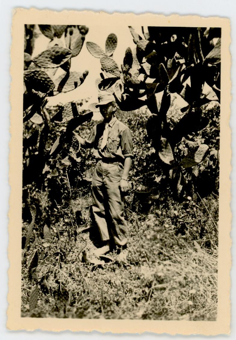 1 Snapshot photo Soldat Allemand - Front Afrique 1943 - Deutsches Afrikakorps - Uniforme - Afrique - Werhmarcht