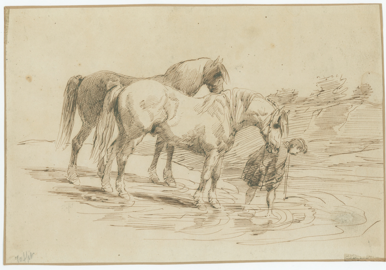 Dessin plume - Chevaux à la rivière - Raffet - 1840 - Uniforme - Monarchie de juillet - Hussard - Plume sépia